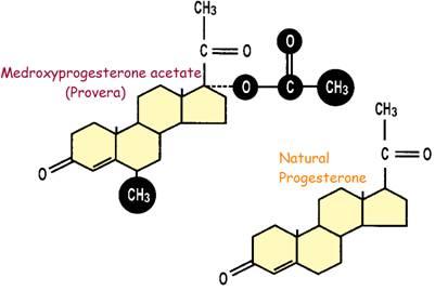 Provera_progesterone_Medroxyprogesterone_the safety_Bioidentical